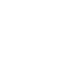 Programmes en visio-conférence